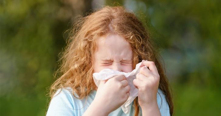 Koje su najcesce alergije kod dece